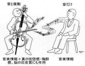 なみのりふね 武蔵小杉 「ボーンコンダクション理論」による2つの音声の体験